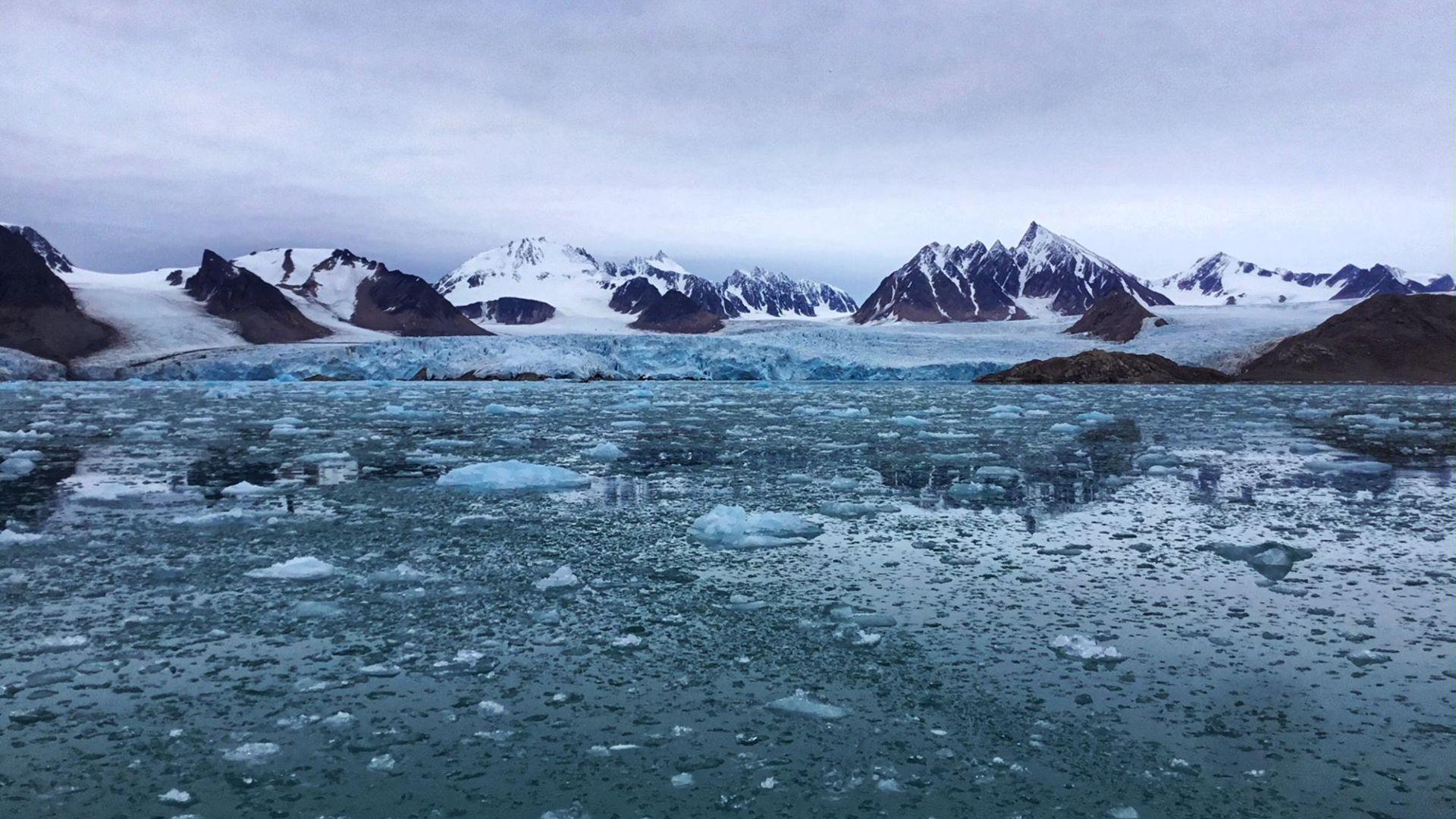 Przemierzanie w arktyce
